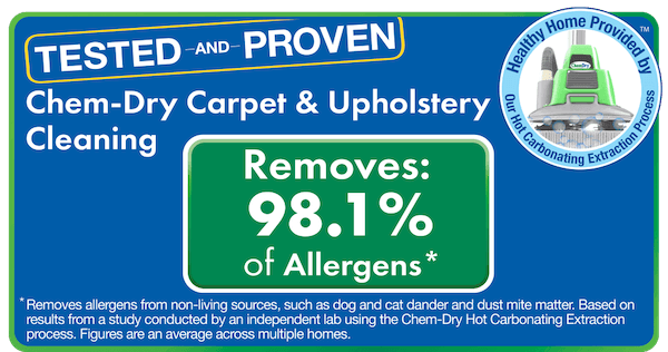 carpet and upholstery cleaning chicago